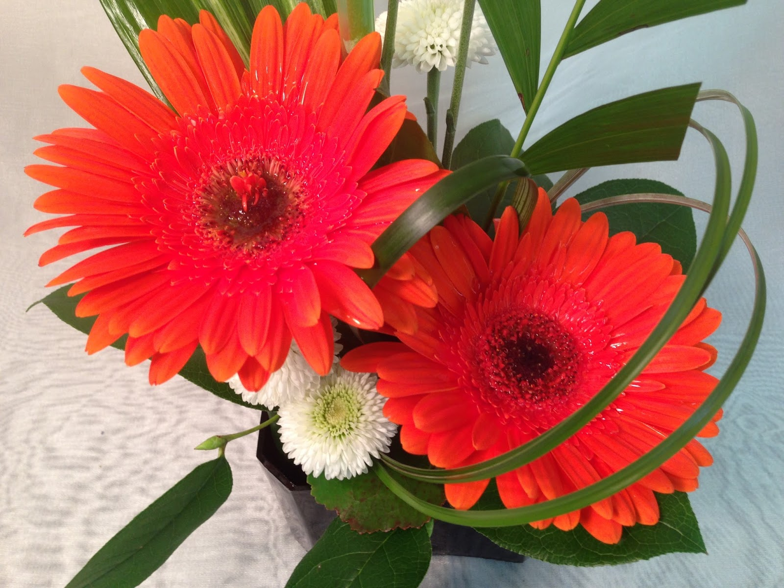 Flower classroom: july 2015