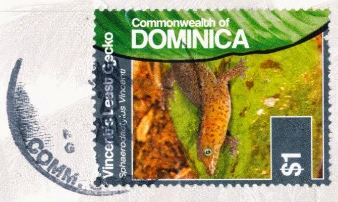 dominica, stamp, vincent's least gecko, sphaerodactylus vincenti