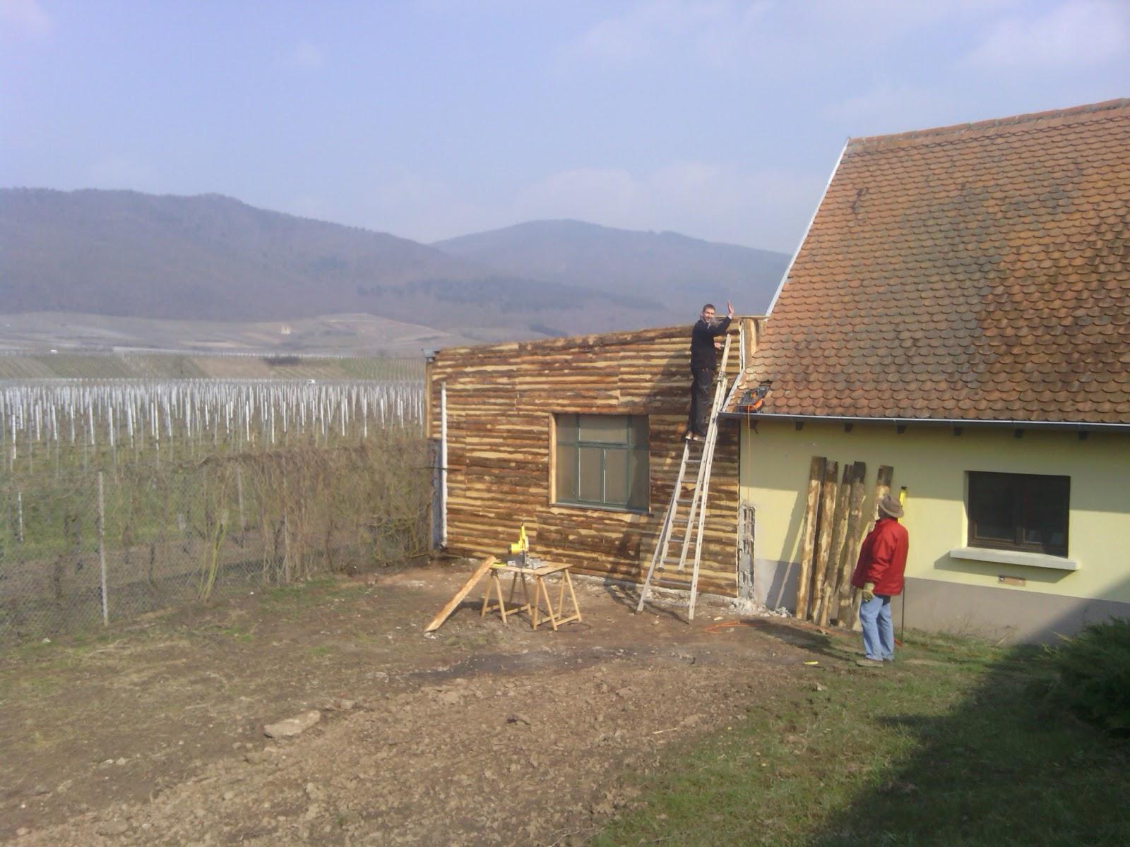 Comment attacher un rosier liane sur un mur en bois au jardin forum de ja - Comment fixer un rosier grimpant au mur ...