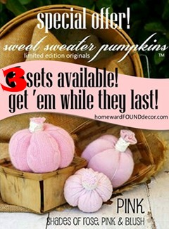 PINK Pumpkins for Sale!