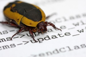 ubuntu bug