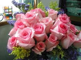 roses - rose - rosas - rosa - flowers - flower - flores