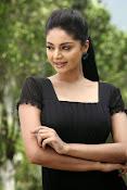 Sanam Shetty Glamorous Photos-thumbnail-9