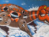 Artes no Muro