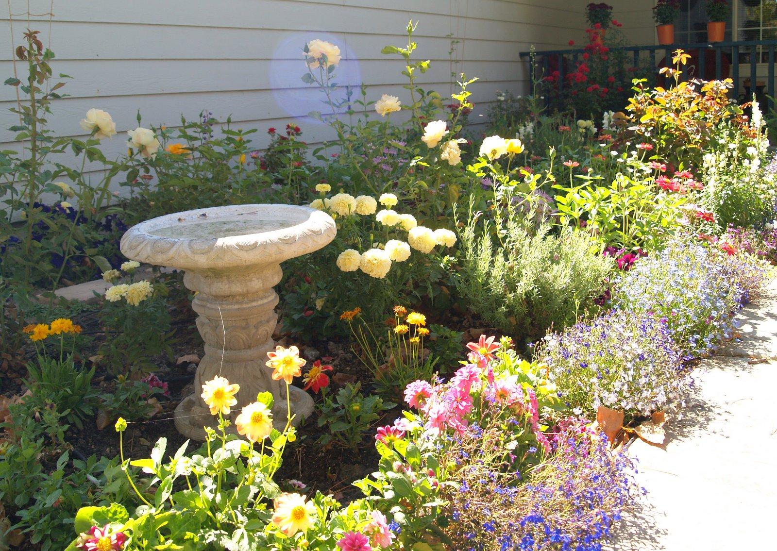Fun Flower Garden : Charming cozy cottage garden fun seeds to start in fall