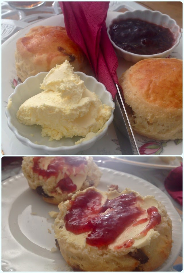 Lady Dinah's Cat Emporium, London - Scones
