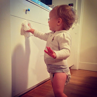 Image: Sometimes she finds a baby wipe and just starts cleaning, by Jason Lander (eyeliam) on Flickr