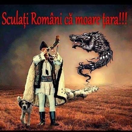 Sculaţi... români !