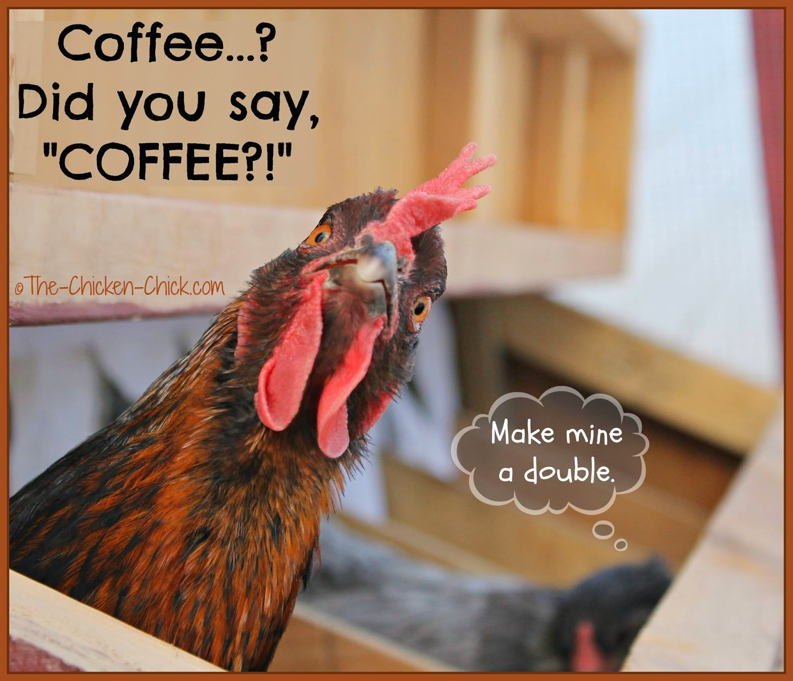 "Coffee...? Did you say ""COFFEE?!"""