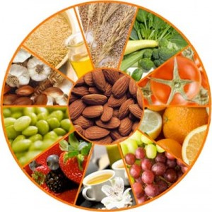 Los Científicos y Los Alimentos