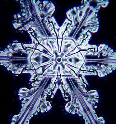 Microscopic photograph of snowflake
