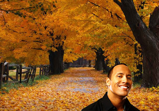 Dwayne Johnson Wallpapers and posters. Movie actor The Rock smiles and keeps smiling while you work in classic Autumn Trees Background for the fans