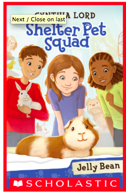 Some Favorite New Books for 3rd Grade Transitional Readers