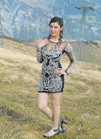 Hot, Richa, Panai, Latest, outdoor, Photos, short, dress, transparent