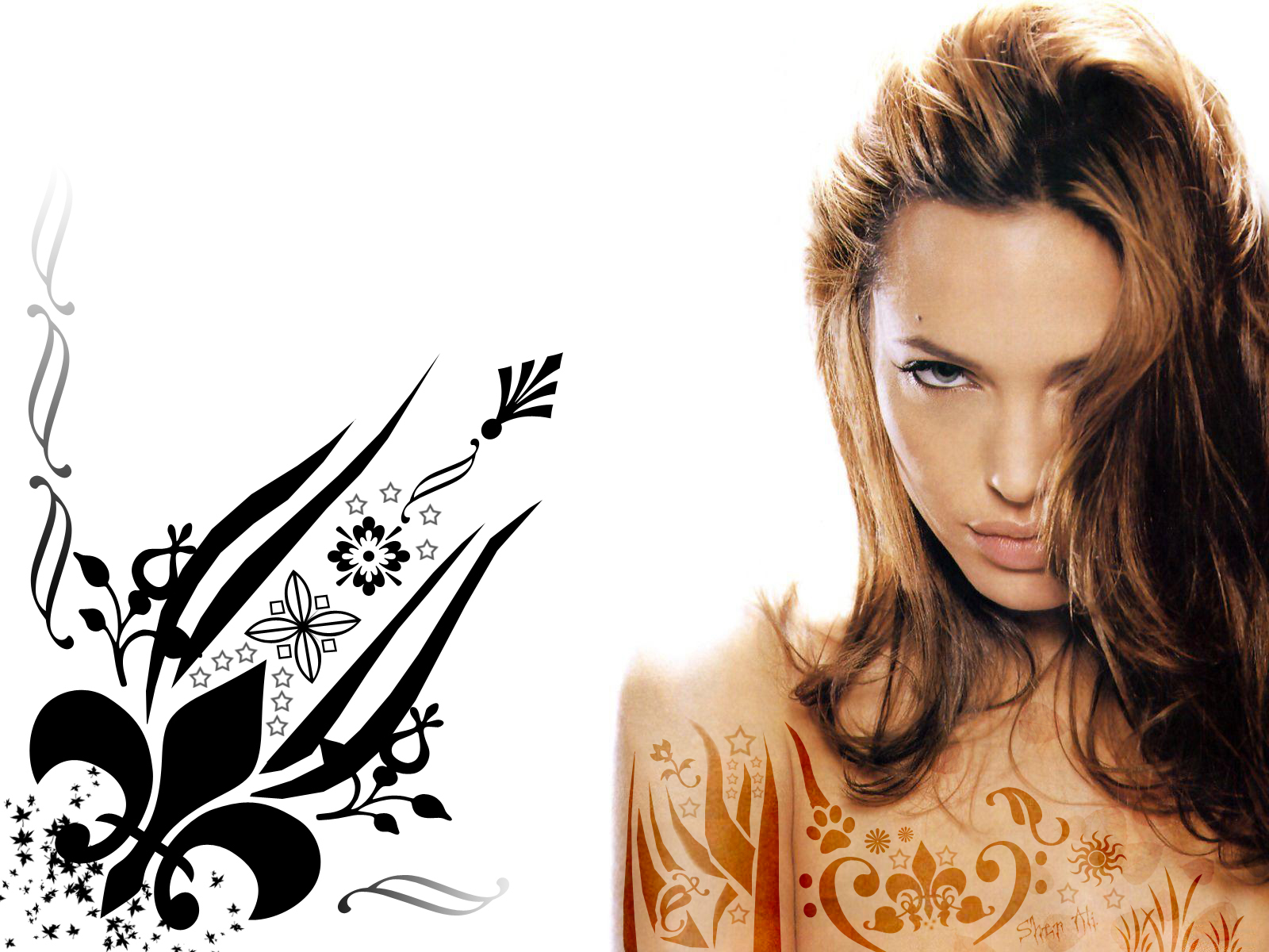 angelina jolie wallpaper | free hd wallpapers