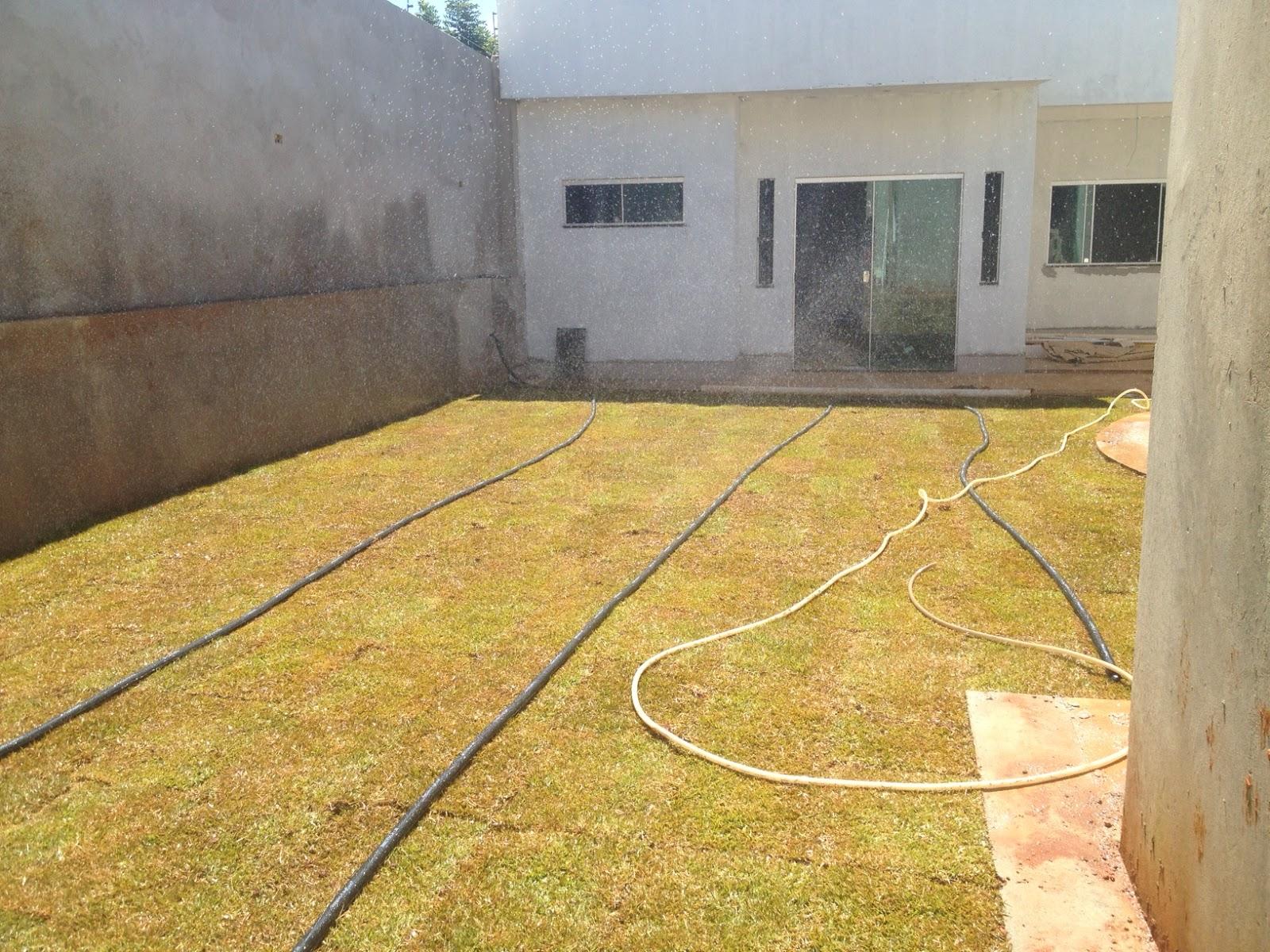 jardim fundo quintal : jardim fundo quintal:Quintal já com a grama. Olhando a parte de traz da casa. Aquela é a