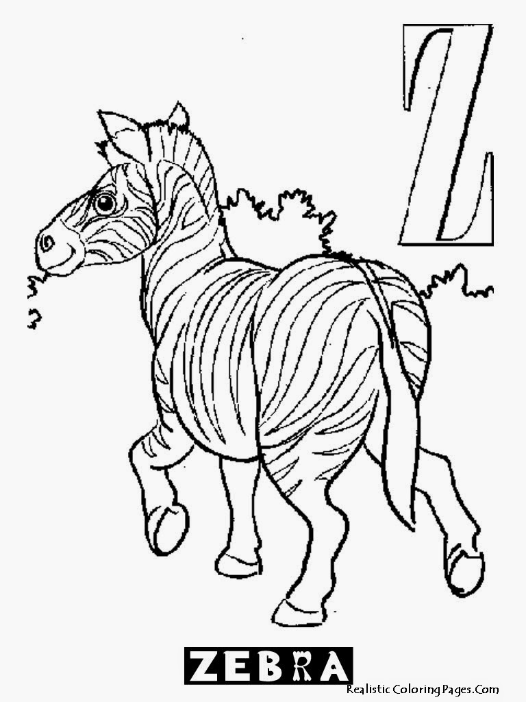 Zebra Coloring Sheet