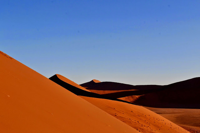 View from the top of Dune 45, Sossusvlei