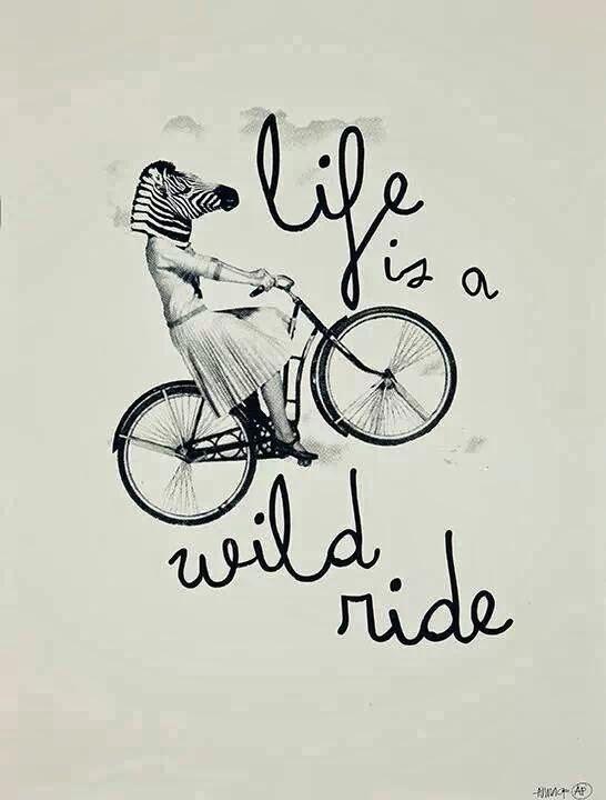 ...Wild ride...