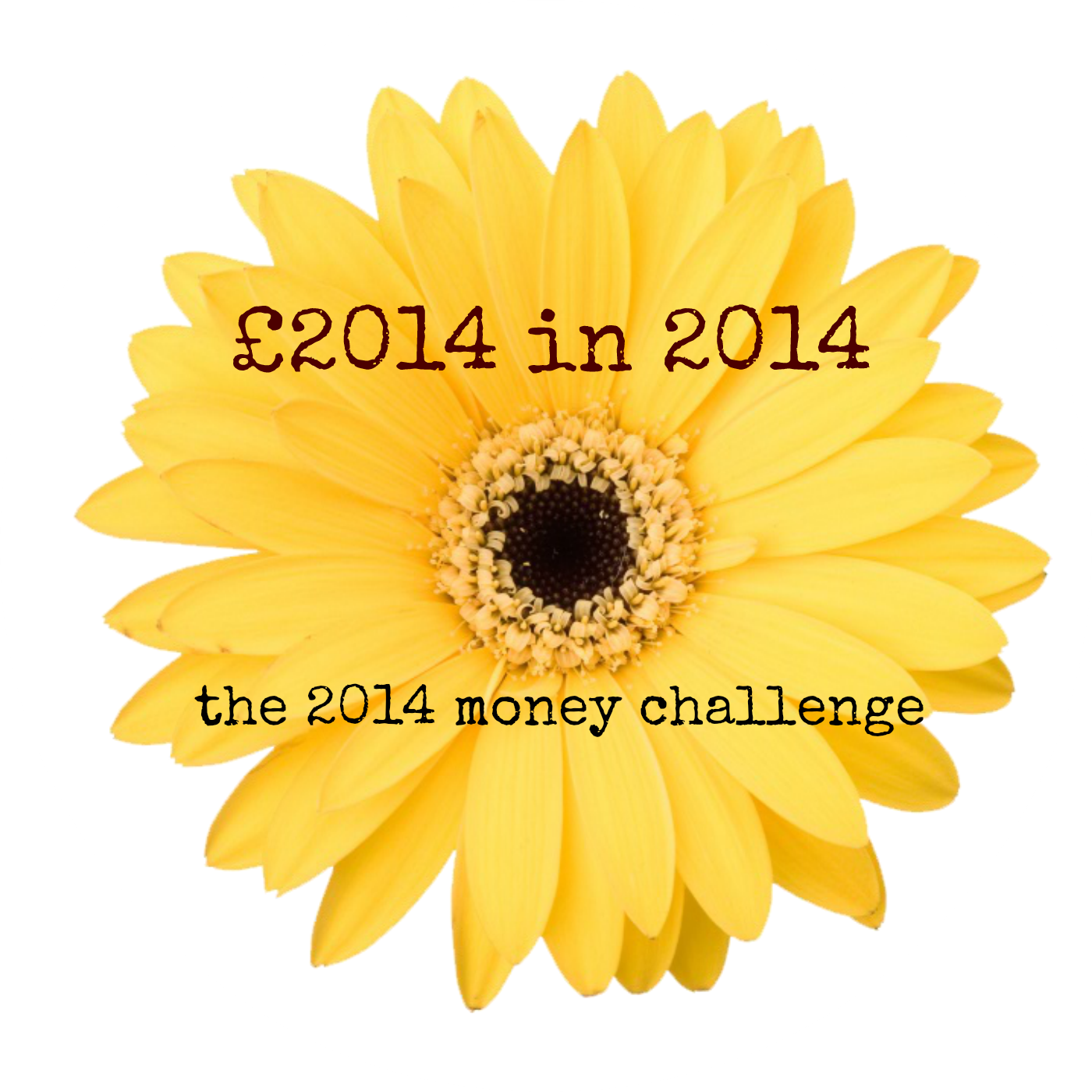 £2014 in 2014 Money Challenge