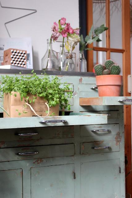 My home / Plantshelfie / Urbanjungebloggers / Photos Atelier rue verte /