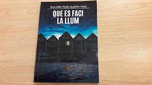 La primera novel·la: