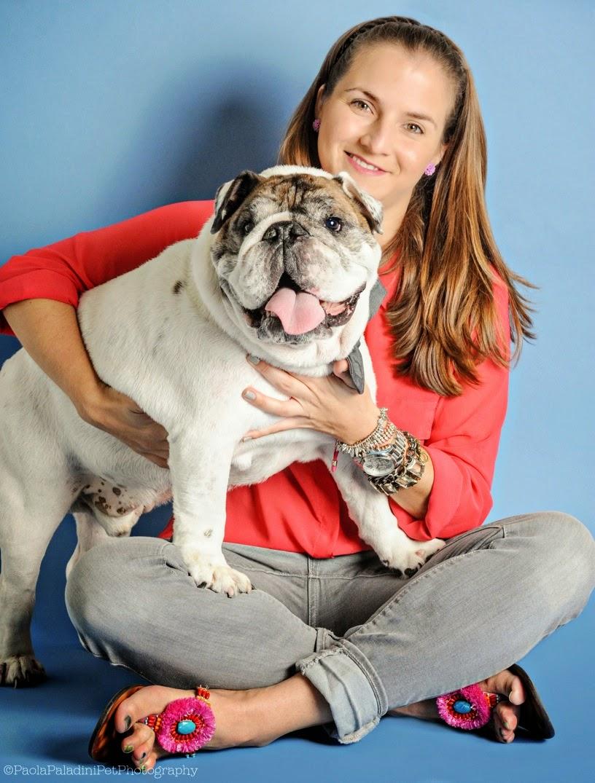 Adopt-A-Bull - bulldog