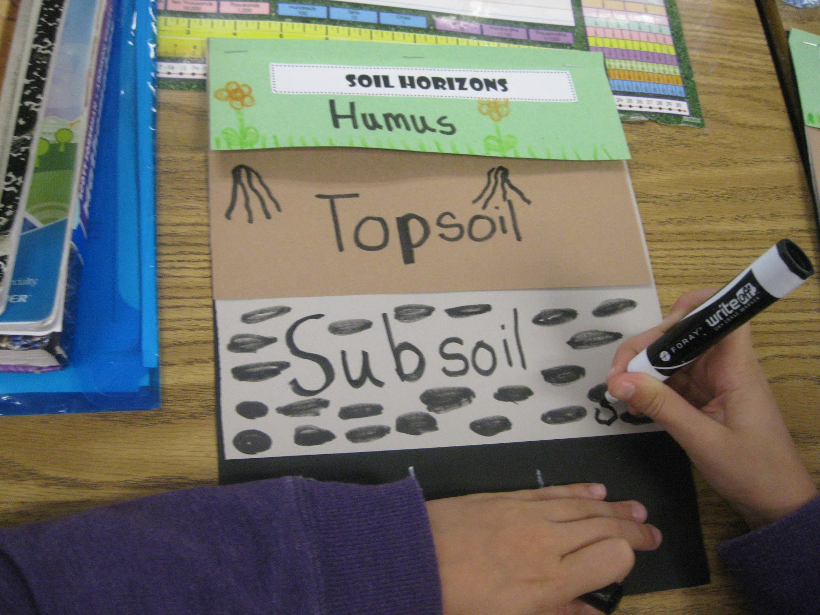 Third grade thinkers science a soil study layers of soil for Soil 2nd grade