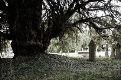Cusop churchyard