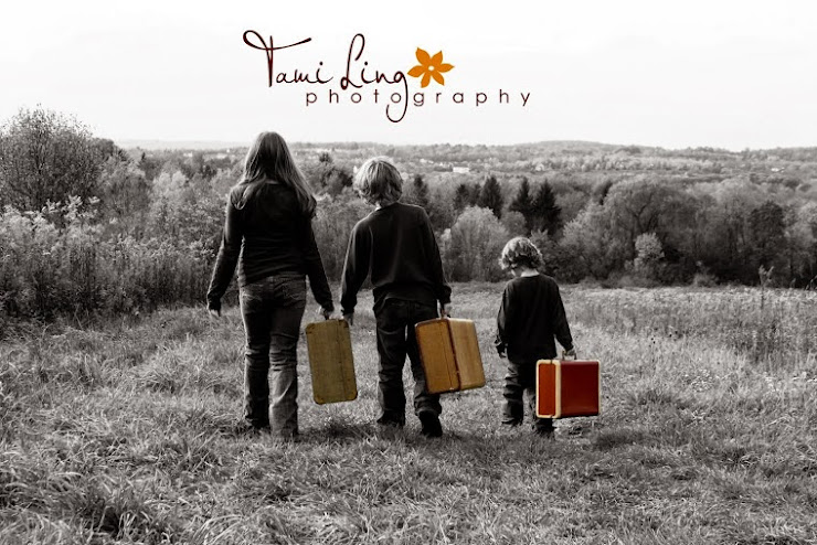 T.L.Ling Photography