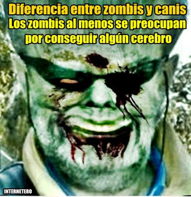 diferencia-canis-zombis-meme