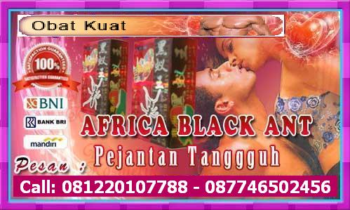 Contact Us  BJUI