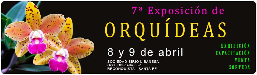 Grupo Orquideófilo del Norte Santafesino