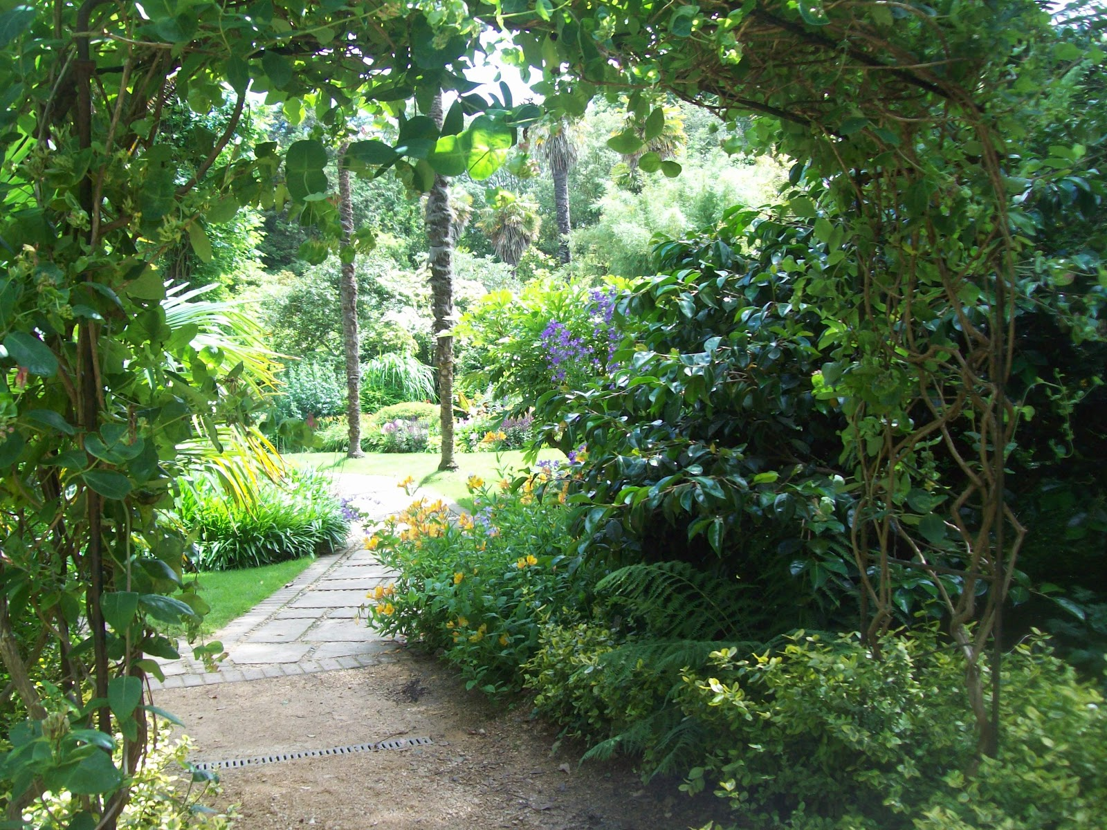 Shade For Sunny Backyard : The Sunny Side Of The Street Abbotsbury Sub Tropical Gardens