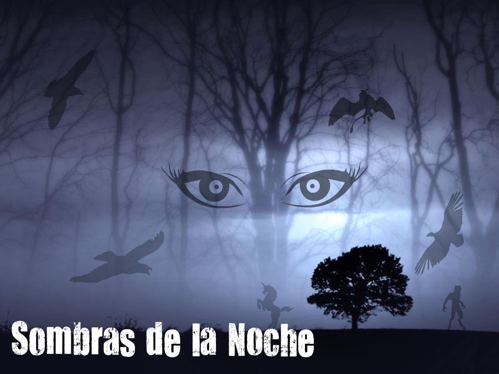 Sombras de la Noche