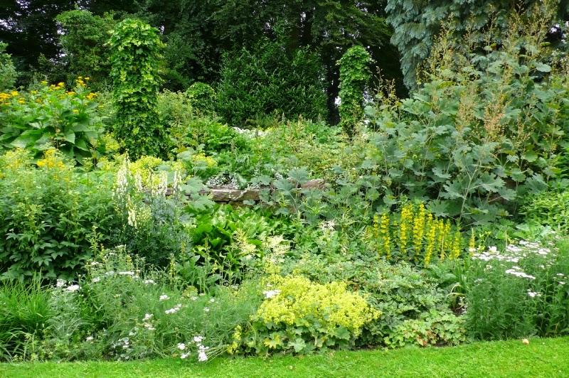 Goednieuwskrant biodiversiteit is en blijft nodig - Tuin ontwerp foto ...