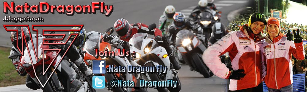 Nata Dragon Fly