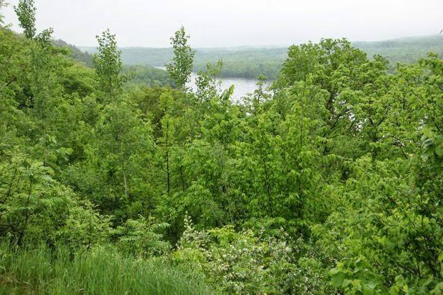 late Spring, St. Croix River