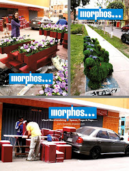 MORPHOS, Visual Merchandising Spaces