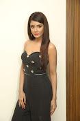 Parul Yadav latest glam pics-thumbnail-2