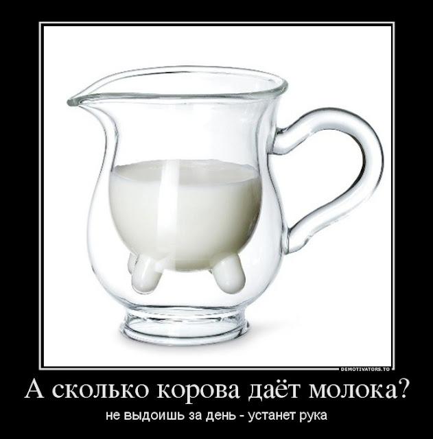 a-skolko-korova-dayot-moloka