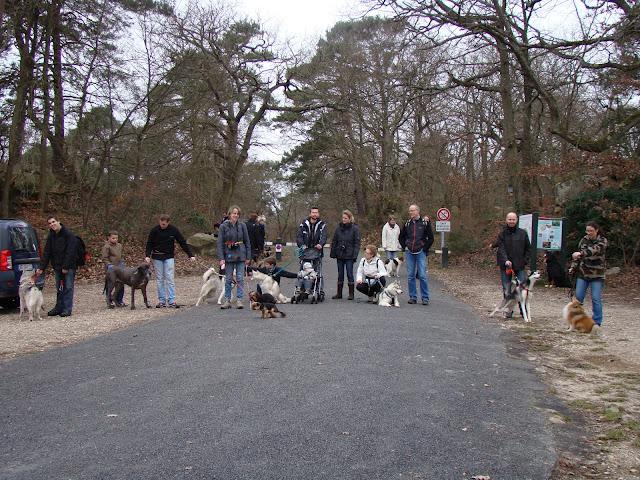 22 janvier : promenade en forêt de Fontainebleau