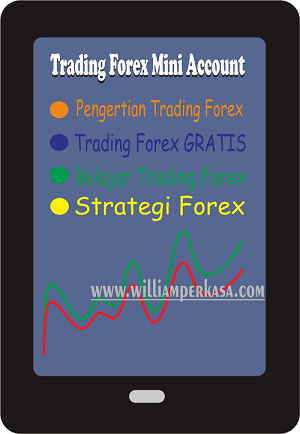 Trading Forex Mini Account