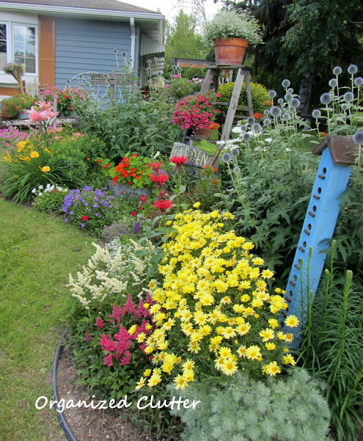 Annual, Perennial and Junk Garden