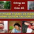 Đàn áp tôn giáo tại Con Cuông là vi phạm nghiêm trọng quyền tự do tôn giáo