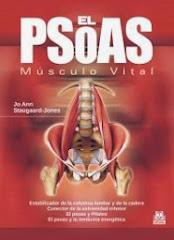 EL PSOAS: MUSCULO VITAL