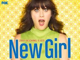 >New Girl 1×20