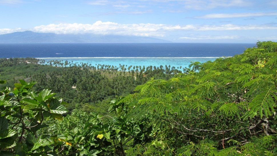 Panorama paradisiaque de Tahiti en Polynésie française