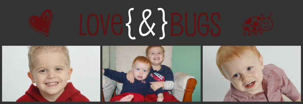 Love{&amp;}Bugs