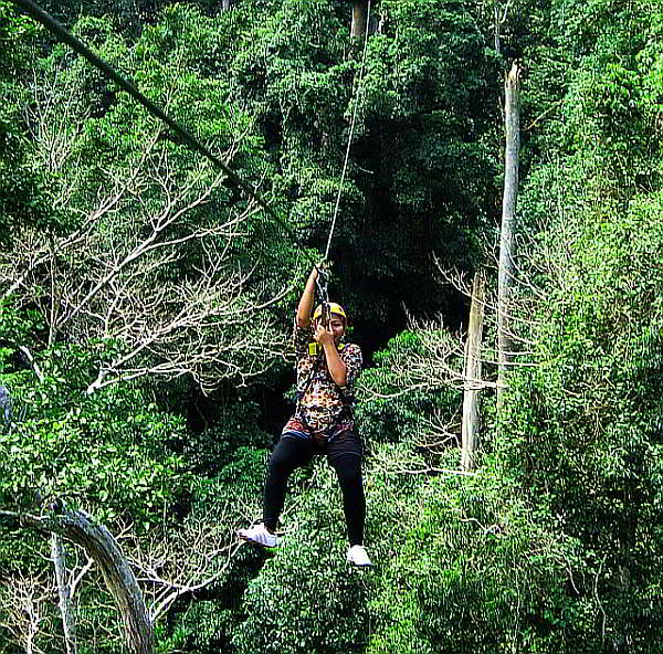 Ziplining through Thailand's tropical rain forests.